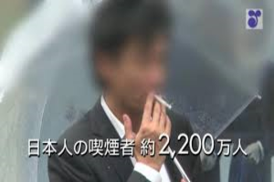 たばこ白書.png